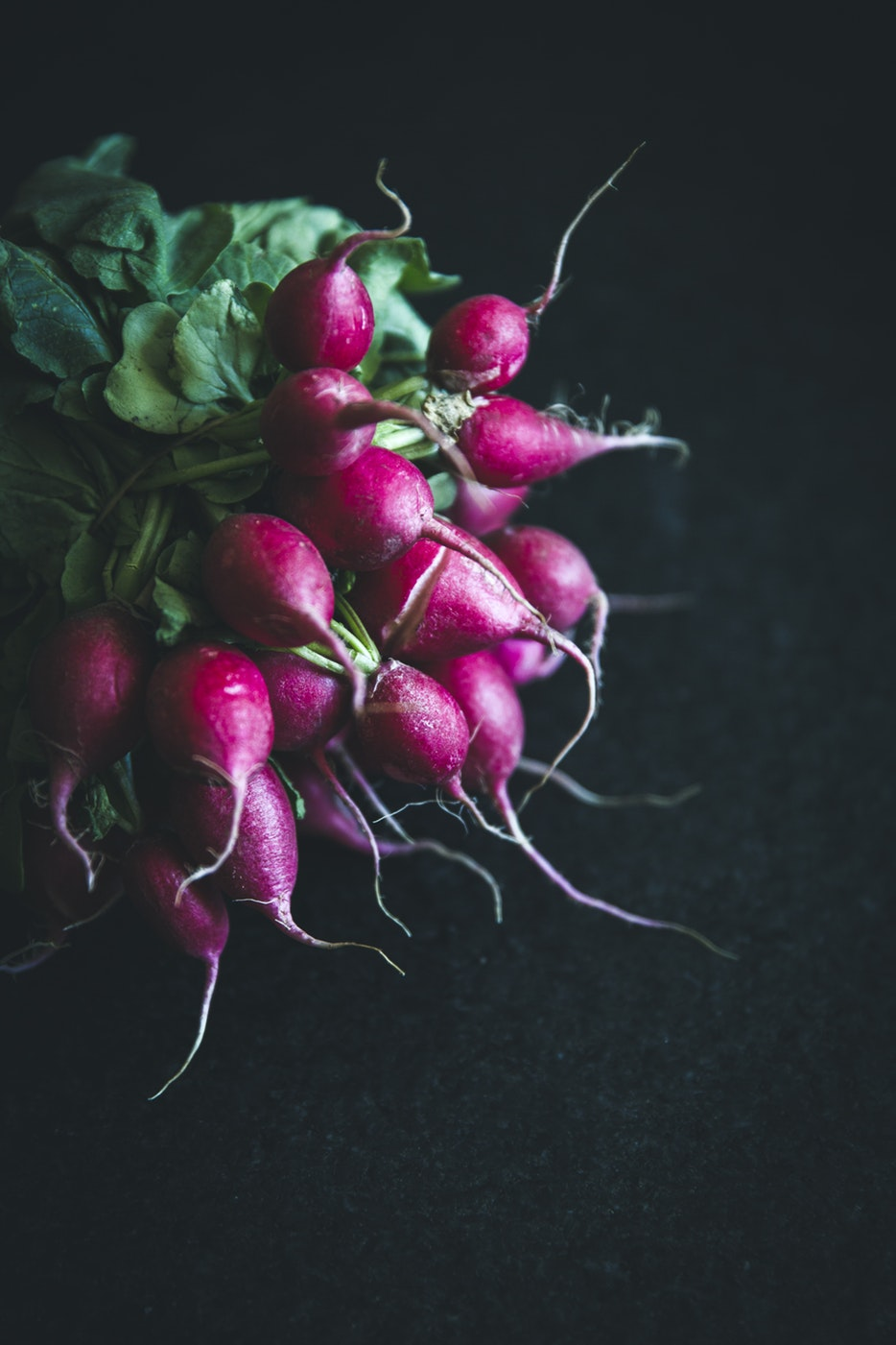 Lovely radishes.........