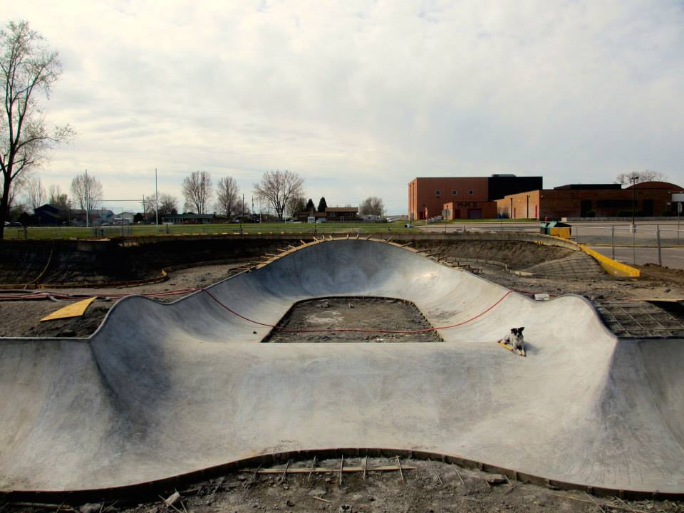 Noot hangs out in the bowl at the Milliken, Colorado Skatepark