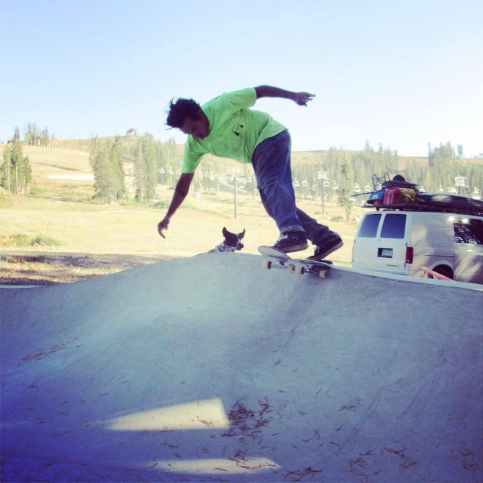 Mike Flint tailslide