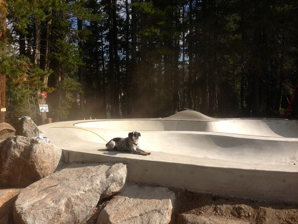 Noot lounges on the concrete at the Woodward Tahoe Skatepark