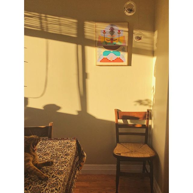 SUN-DAY #sanfranciscosundaylight #newland #1 #light #shadows #painting #kithenlight