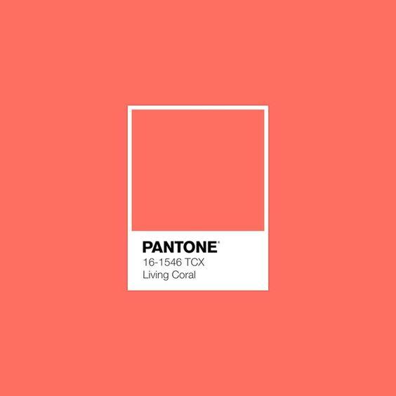 2019 pantone.jpg