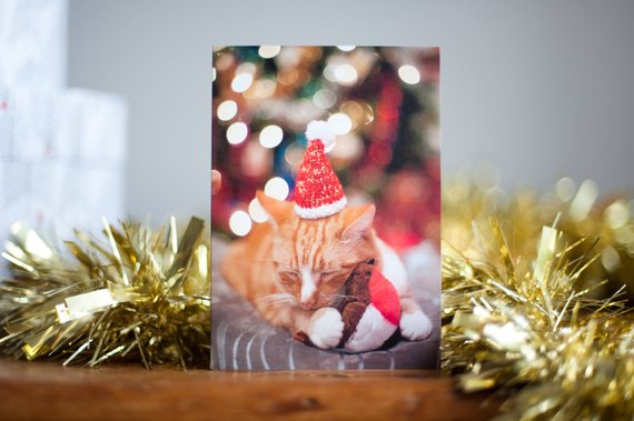 CAT IN HAT CHRISTMAS CARD - Bifrost Photography was founded by Libby, a photographer from the South-East of England, who now creates cute and quirky products from her photography projects.This sweet Christmas card is perfect for any cat lover this festive season. All cards are printed on luxury card stock from sustainably sourced paper with a matching envelope.