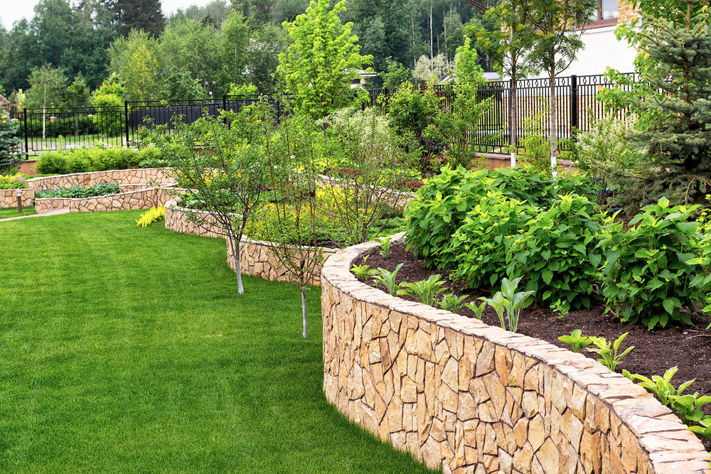 A guide by Aveco Pools on how to choose landscaping plants