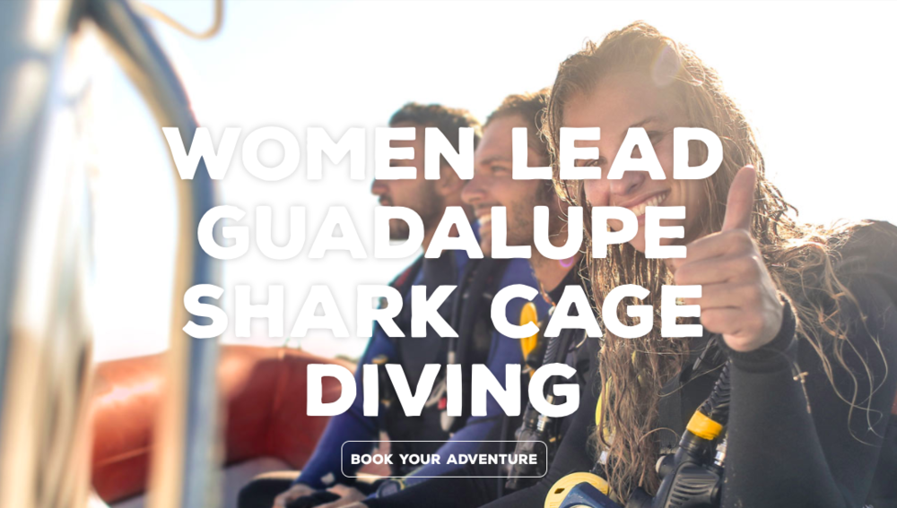 Guadalupe Shark Cage Diving for Women