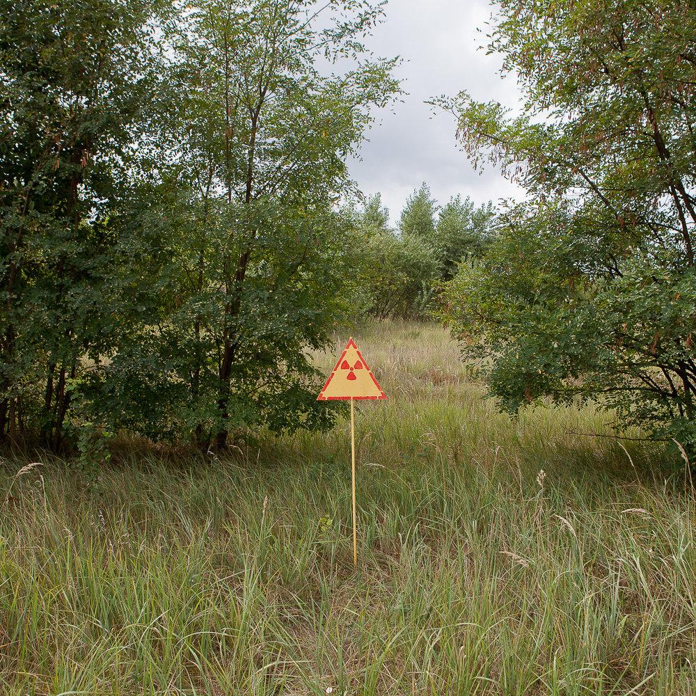 Chernobyl-TodSeelie-2.jpg