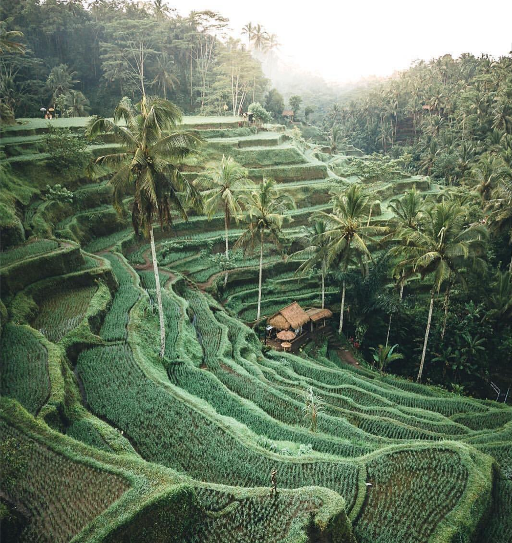 February 20 - February 27, 2019 - Group Size: 14*SOLD OUT*Bali is the ULTIMATE bucket list destination for every girl. Lucky for you we are taking our second GIRLS TRIP to one of the most breathtaking islands in the world. Join us as we explore the Balinese culture and visit some of the most beautiful sights on the island.We're talking about temples, waterfalls, food, and most of all, the people who make this island so beautiful. We will be taking you through an experience you will remember for a lifetime.Here's a little taste of what you can expect:*Luxury Private Villa with Pool, Beautiful Sunset and Picture Perfect Backdrops**An Experience Packed Itinerary Customized with Curated Experiences**Local and Specialty Dining Experiences*