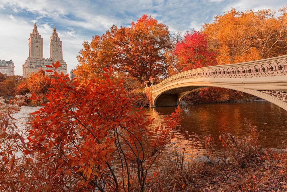 Bow Bridge in Central Park, completed in 1862.