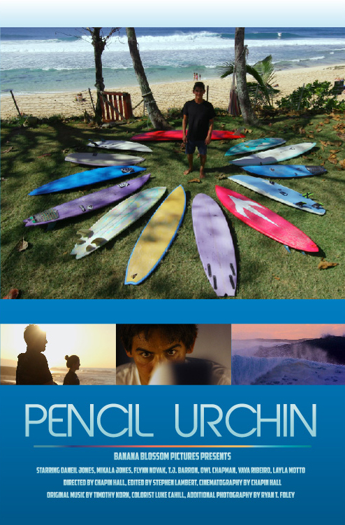 Pencil Urchin.jpg