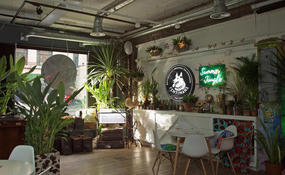 BEST_SJ_interior.jpg