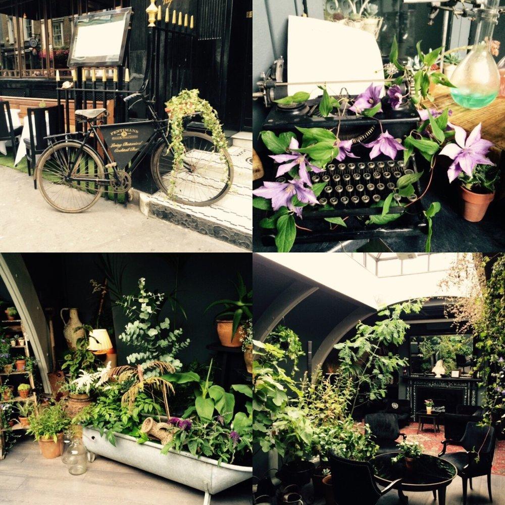 Botanical Cocktail Bar.jpg