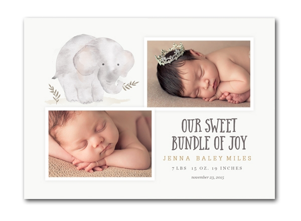 25 Birth Announcements | $50