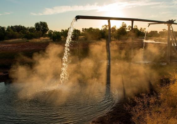 bore-water-ozone-elavo-generators-kill-bacteria.jpg