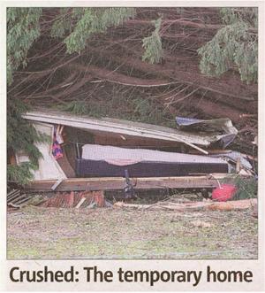 crushed.jpg