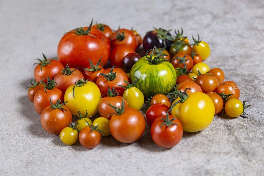 Isle of white tomaotes