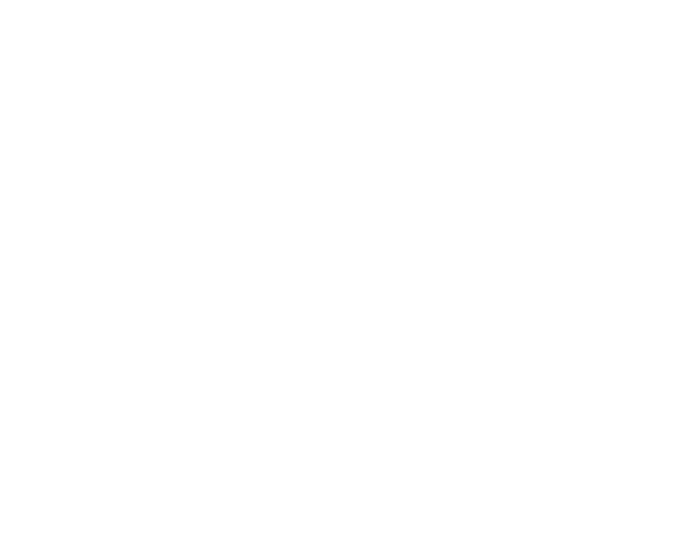 logosalomon-black.png