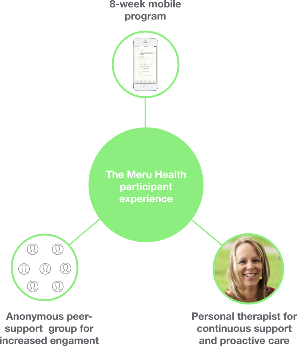 participant experience meru health online treatment.png