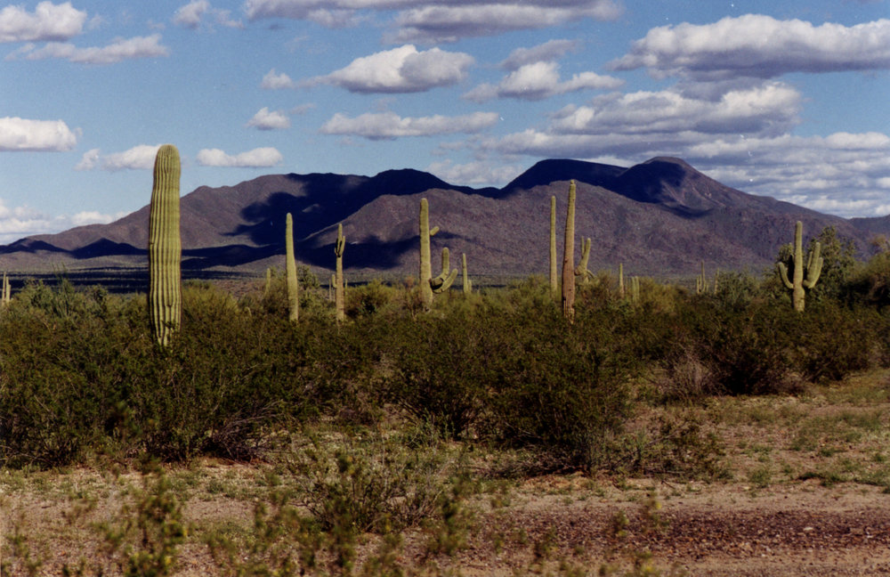 American Southwest - I lived there for a while.