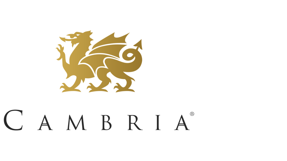 TBS-logos_left_0000s_0031_Cambria.png