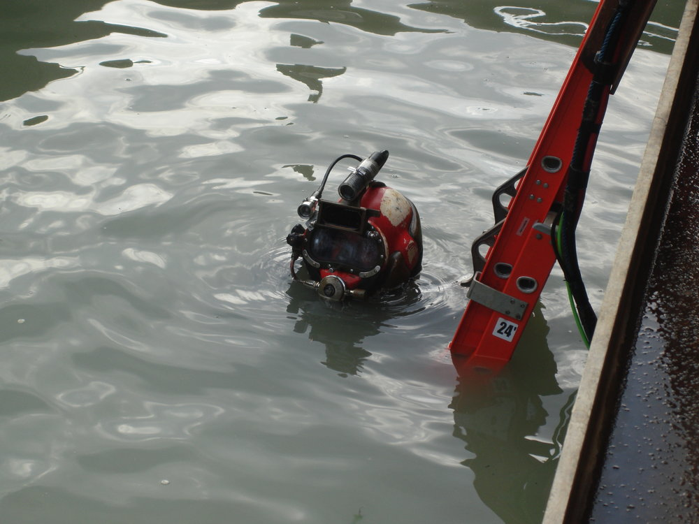 Triton Marine Diver Dave Mednick 012.JPG