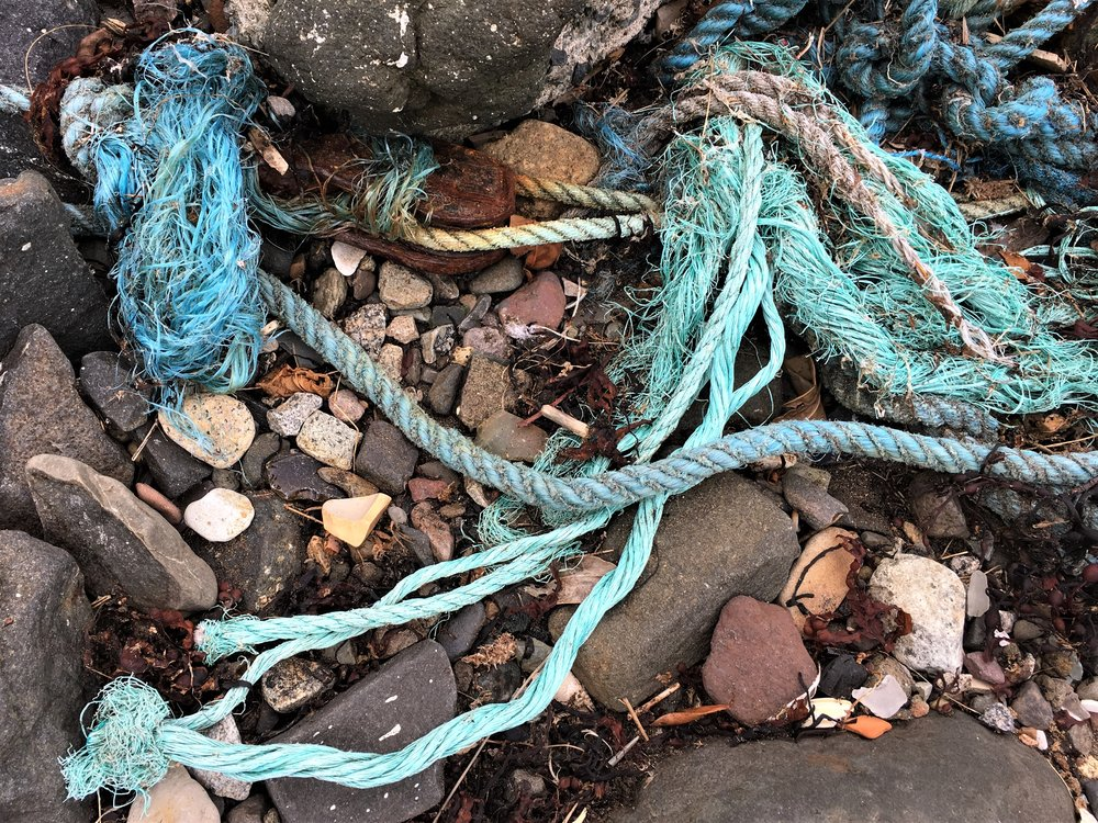 Staying right on the harbour, even as I stepped out of the car I spotted an interesting piece of rust and lots of bright coloured rope; my curiosity was piqued!