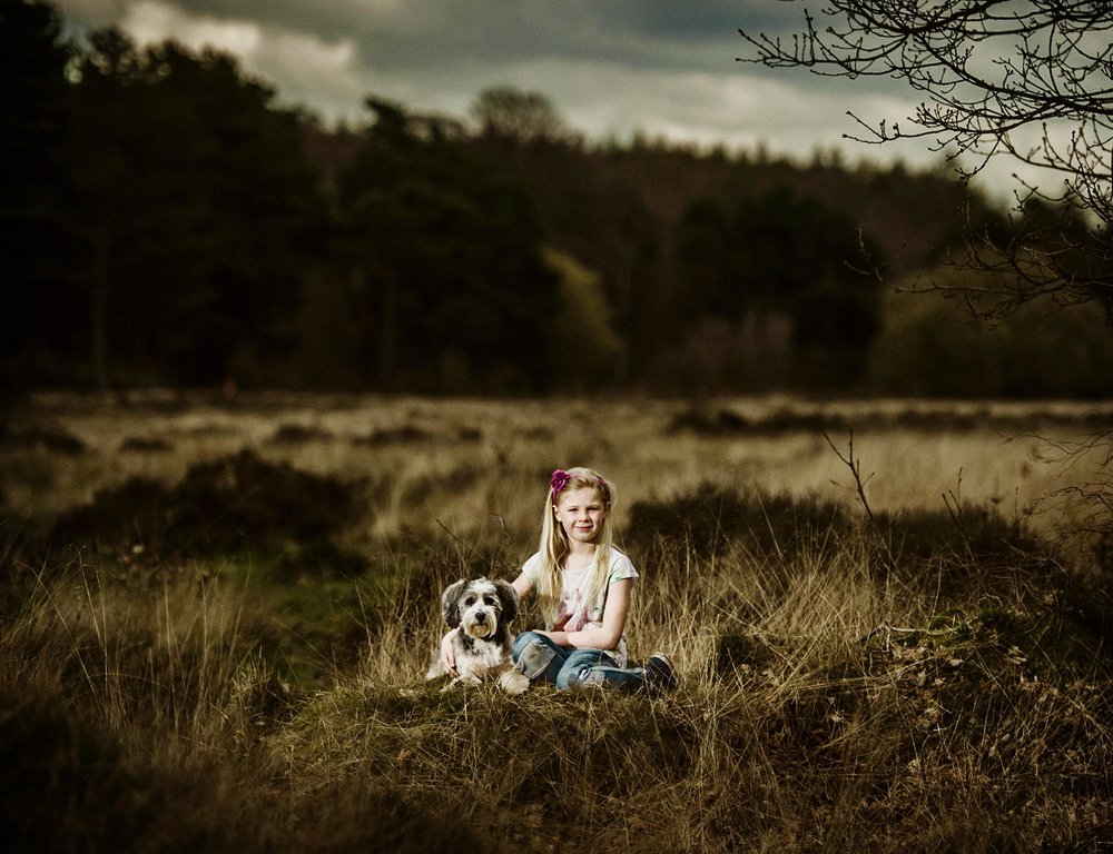 yorkshire dog pet portrait photographer yorkshire.jpg