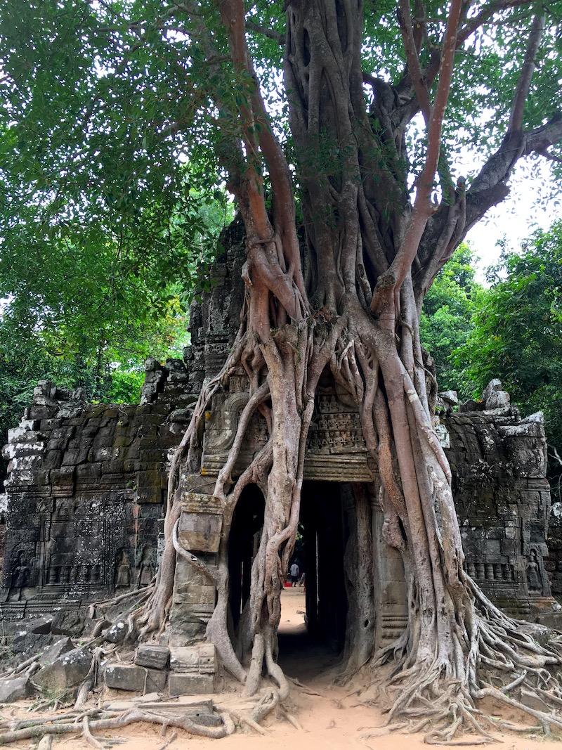 A entrada do templo de Ta Som. Foto: Patti Nevs