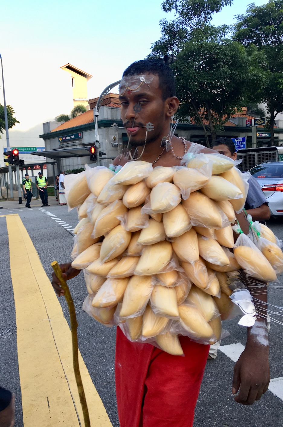Devotee carrying dozens of mangoes hung by hooks. Photo: Patti Neves