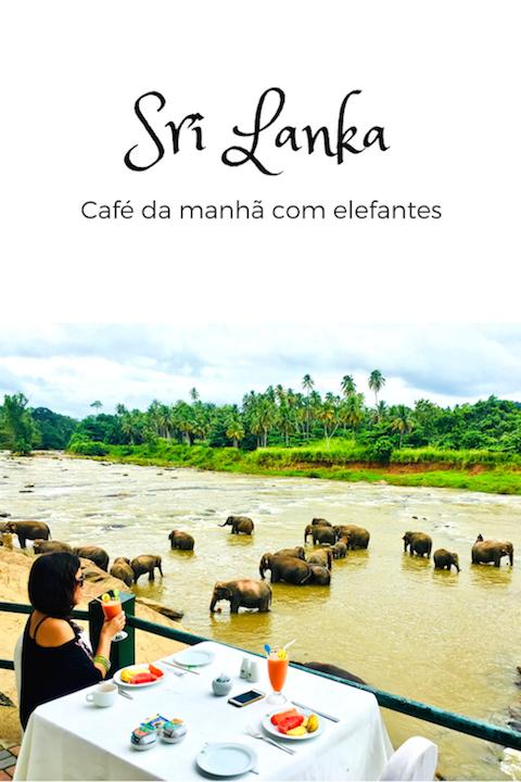 Café da manhã com elefantes no Sri Lanka: Foto David Mattatia