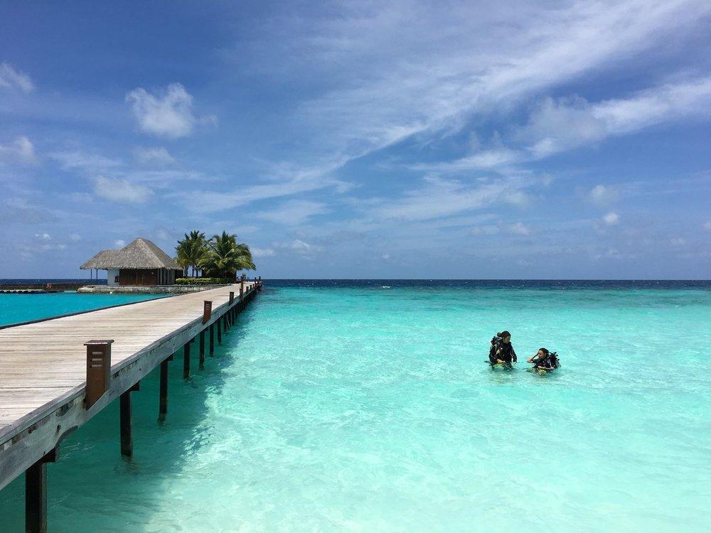 North Ari Atoll, Maldivas. Foto: David Mattatia