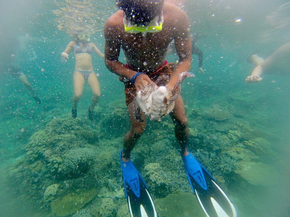 Caça ao polvo, ilhas de Palawan. Foto: Patti Neves