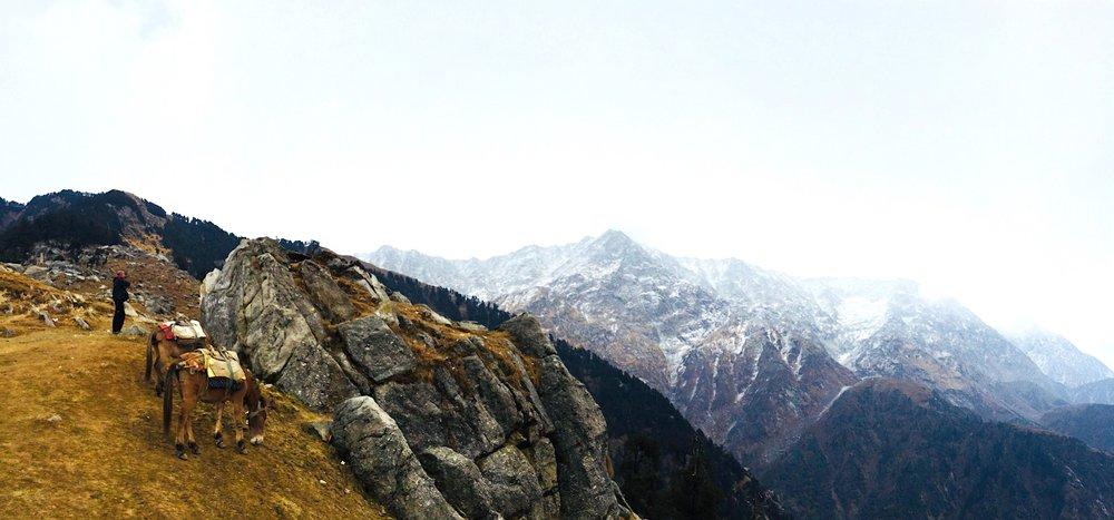 Triund trek e os Himalaias no fundo. Foto: Patti Neves
