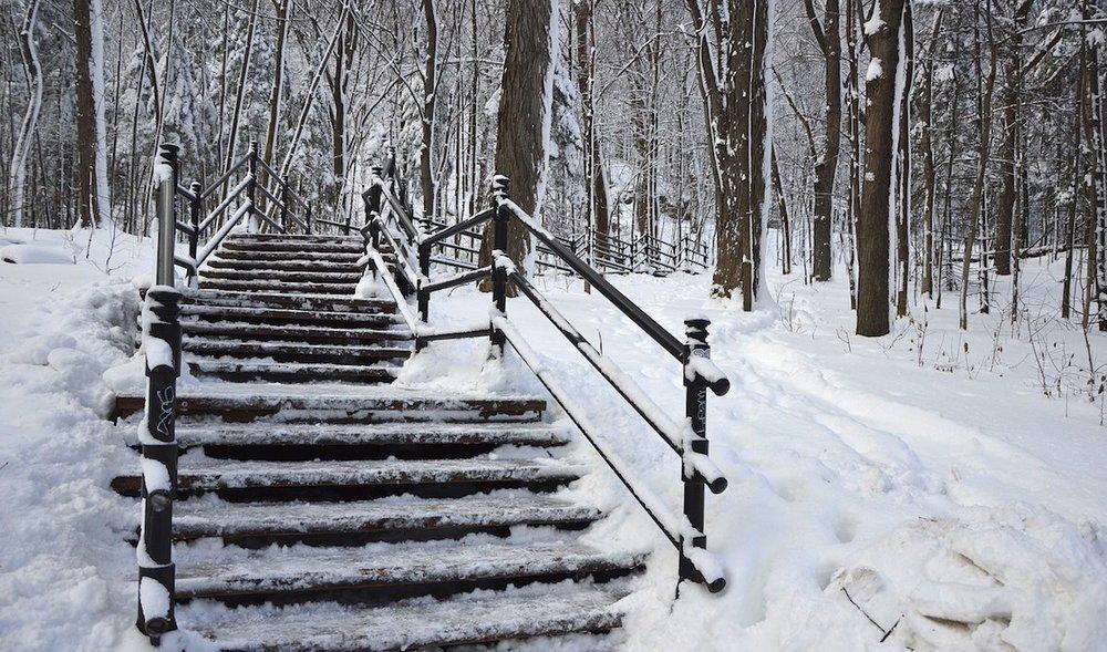 O parque Mont Royal te espera. Foto: Pixabay