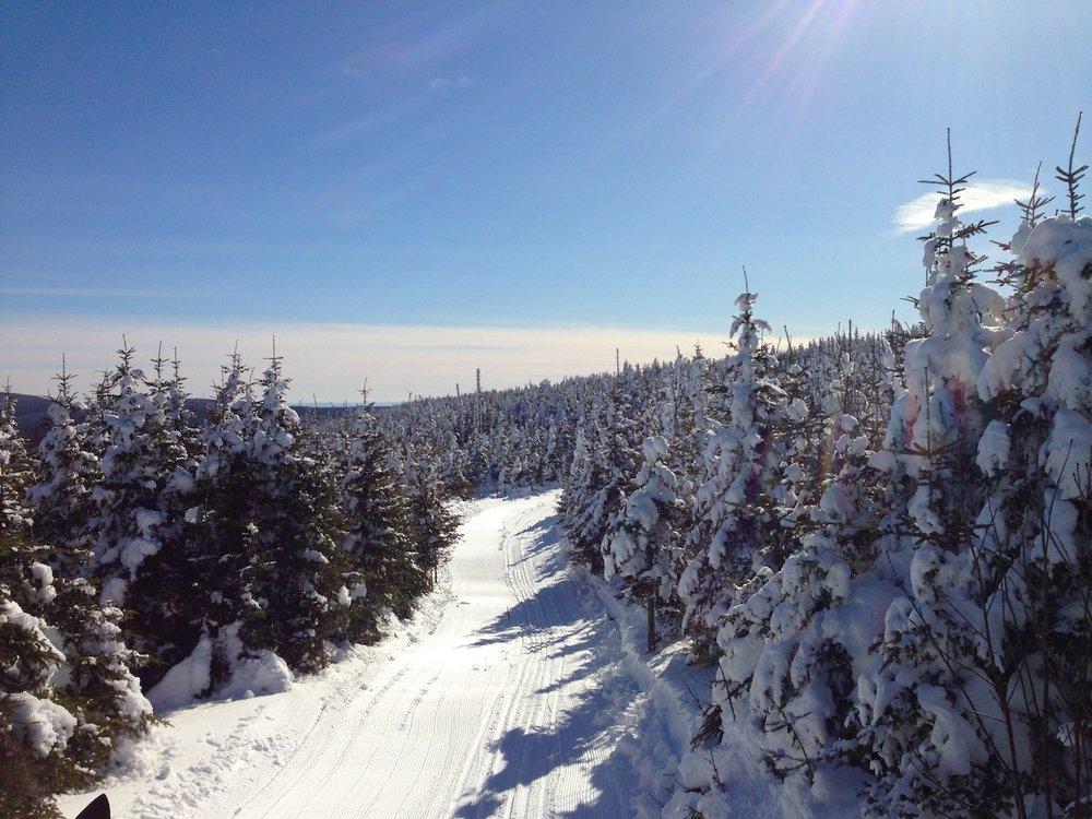 Snowcat track. Foto: David Mattatia