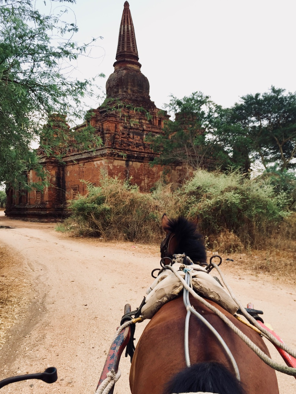 3 days in Bagan, Myanmar. Foto: Patti Neves
