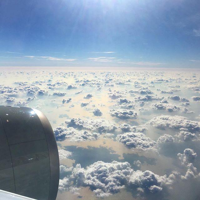 These are definitely my fav clouds of 2018 🐫 #qatar . . . Mais uma vez conectando em Doha, mas dessa vez com as nuvens mais fofinhas. Chega logo Irã! . . #doha #qatar #crazyclouds #cloudsoftheday #minasqueviajam #brasileiraspelomundo #blogsdeviagem #trippingunicorn  #amazingdestinations #beautifuldestinations #amazingplaces #aroundtheworldtrip #meucliqueestadao #theglobevacationer #dreamdestination