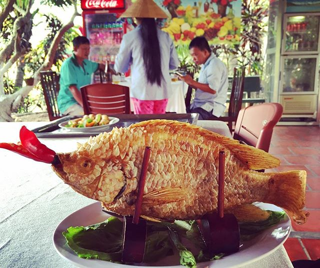 "There are plenty of fish in the sea, but this one came from Mekong Delta, Southern Vietnam. A vast maze of rivers, swamps and islands, home to floating markets, Khmer pagodas and villages 🇻🇳 . . . Um olho no peixe outro no gato? 😬 Quem acha ""meio diferente"" o jeito que os vietnamitas preparam peixe? Esse veio do Mekong, um labirinto de rios, pântanos, mercados flutuantes e vilas. . . . #crazyfish #deltamekong #mekongriver #vietnam #travelblogger #friedfish #mochileirosgrupofechado #traveldeep #fishy #fishing #meucliqueestadao  #amazingdestinations #beautifuldestinations #amazingplaces #aroundtheworldtrip #meucliqueestadao #theglobevacationer #dreamdestination #brasileiraspelomundo"