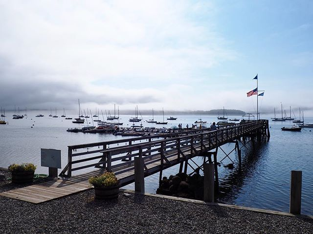 The fog is rolling out just in time for our Pond Island Rendezvous. We're ready for some lobster!!