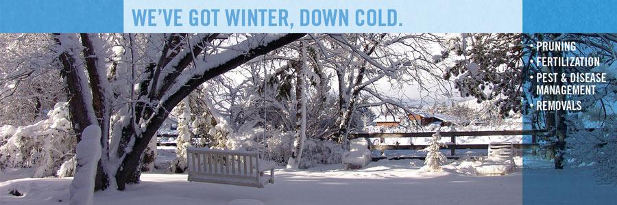 featured_bartlett_winter.jpg