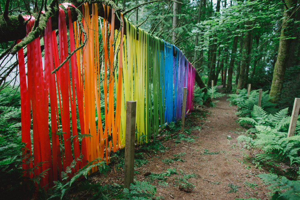 WH Outdoors Ribbons in Wood.jpg