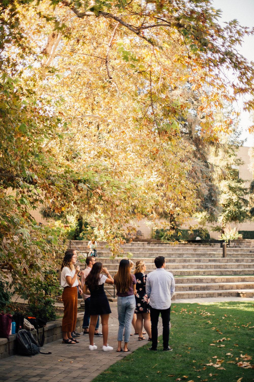 Wynn Amphitheater