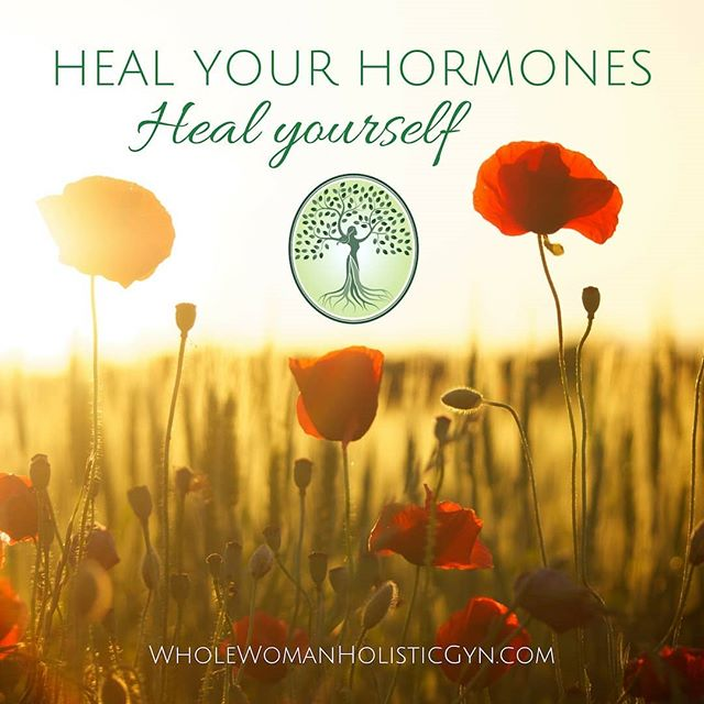 Your body, including your hormones, has the ability to HEAL itself if given the proper support - not all problems require medicine or surgery. Request an appointment online today to learn how to optimize your body's support naturally, and let true healing begin.  #hormonehealth #holistichealth #holisticgynecology #pms #menopause #pcos #estrogendominance #oberlin #wwhgyn