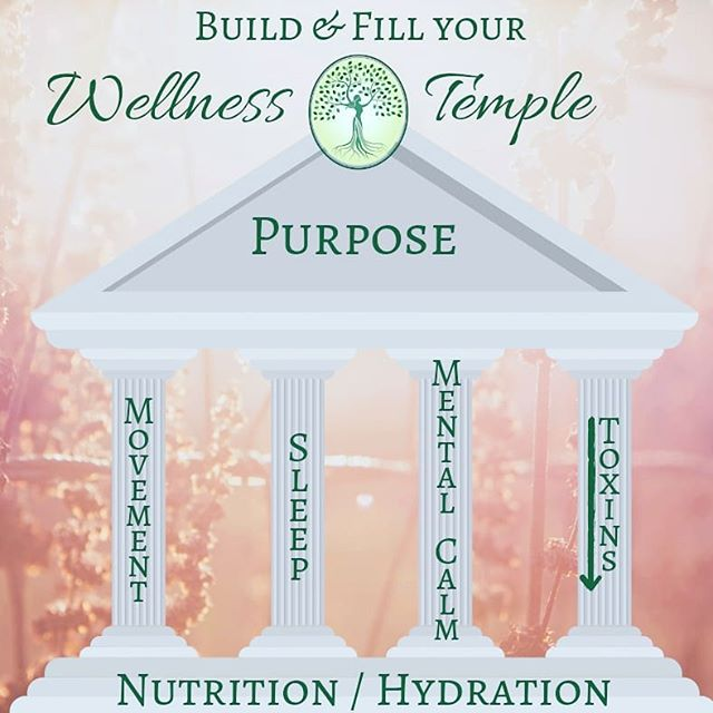 Build your temple on a solid foundation of clean nutrition and good hydration.  Then support it with healthy movement, restful sleep, stress management & inner peace, and by reducing as much toxic exposure as you can.  We build our temples to be strong and resilient, so that ultimately we can live our PURPOSE. Body, Mind, and Spirit - they are all connected, and they make us whole.  #holisticgynecology #holistichealth #holistichealing #integrativemedicine #naturalhealth #foodismedicine #mindfulness #mindbodyspirit #oberlin #ohio #wwhgyn