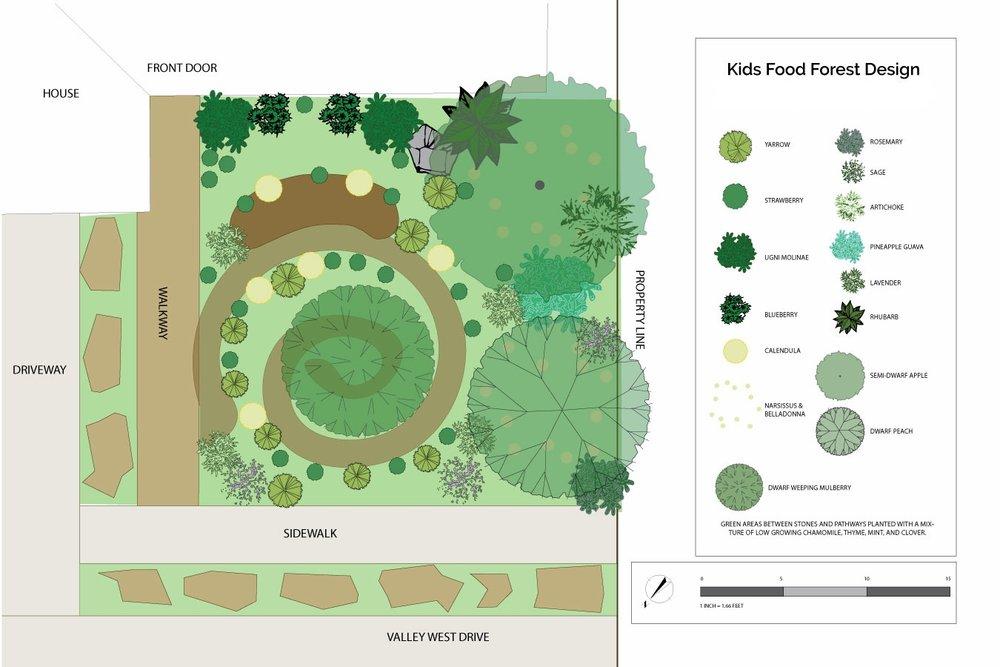 A front yard food forest concept design. Santa Rosa, 2016