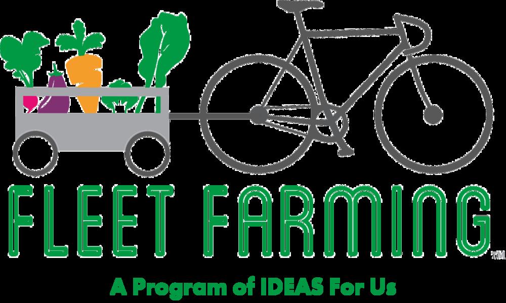 fleet program of ideas.png