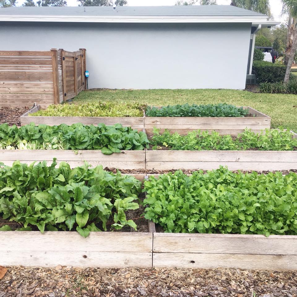 Home Garden Installs