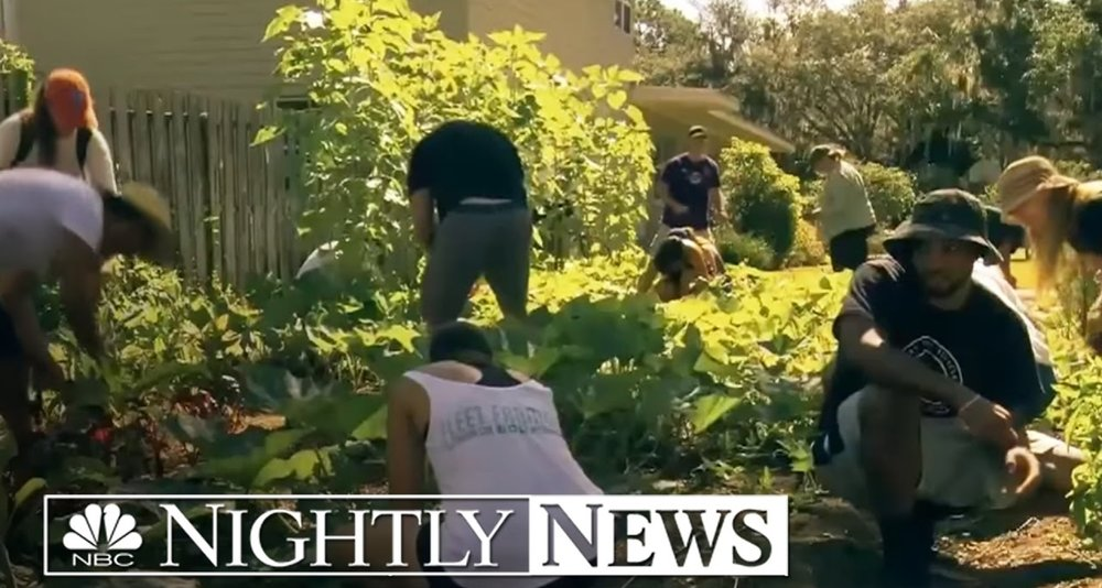 Fleet Farming? How One Group Wants to Turn Your Front Yard into a Full-Fledge Farm   NBC Nightly News W/Lester Holt Spotlight October, 2016.