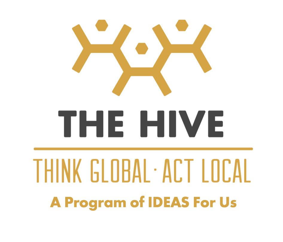 The Hive - is an interdisciplinary, intergenerational Think/Do Tank designed to educate people and develop their ideas into action projects. The Hive meets in communities to grow stakeholders and educate them around the 17 SDGs. Through seminars, field trips, action projects, and film screenings, The Hive is designed to transform communities though a routine and monthly presence.