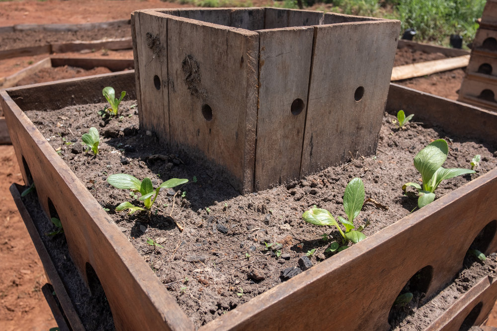 Vertical Microgardening Unit in Uganda