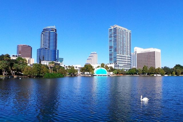 """""""The City Beautiful,"""" Orlando Strives to live up to it's name by protecting it's natural environments and improve the quality of life of its residences.⠀ Photo by Kara Franker for VISIT FLORIDA⠀ .⠀ .⠀ #thinkglobalactlocal #nonprofit #environmental #ngo #climatechange #environment #change #action #community #IDEASforUS #sustainability #SDGs #people #sustainabledevelopment #goals #globalgoals #equality #green #nonprofit #humanitarian #solutions #local #hyperlocalfood"""